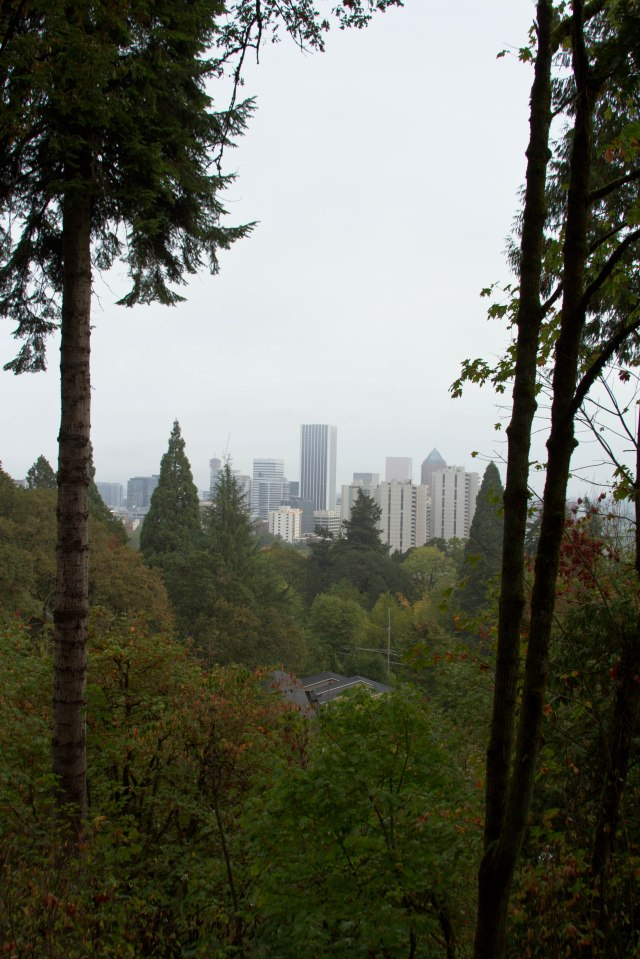 The west side through the trees